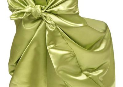 Line Green Satin Chair Cover